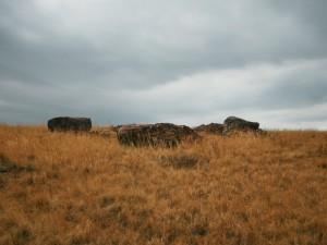 Рядом с какими камнями интересно думать, рассказал уральский писатель