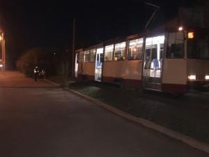 Трамвай сбил женщину в кустах