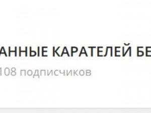 Персональные данные белорусских силовиков выкладывал в сети 15-летний подросток