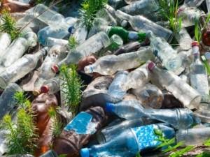 Голодный супер-мутант, пожирающий пластик, случайно был создан учеными