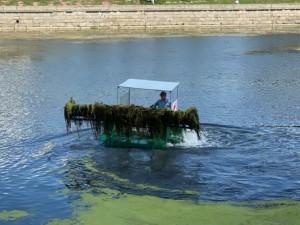 На 40% завысили стоимость работ по очистке русла реки Миасс