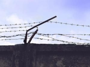 За вербовку в ИГИЛ заключенного курганской колонии приговорили к еще 12 годам лишения свободы