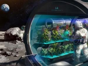 На Луну можно не брать кислород - его достаточно в лунной пыли