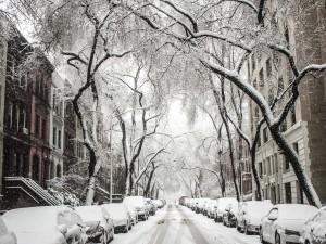 102 единицы техники чистят улицы Челябинска от снега