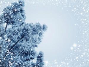 Погода в январе: каким будет первый месяц 2021 года?