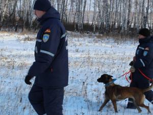 Пропавшего в горах Челябинской области 80-летнего лыжника нашли мертвым