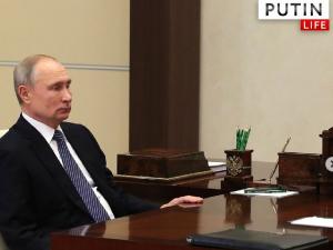 Утверждение о том, что Путин боится Навального, Песков назвал ерундой