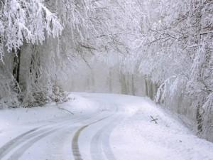 Морозы до 25 градусов идут на Челябинскую область