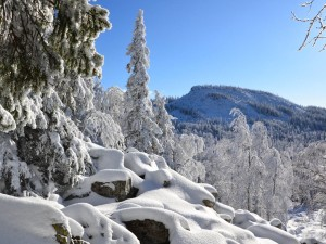 16 часов в канун Рождества спасали туриста с аритмиейв уральских горах