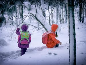 Отмены занятий в школах Челябинска нет