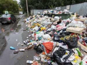 Взыскание долгов с южноуральцев за вывоз мусора в 2021 году будет усилено