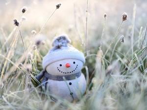 Погода в Челябинске: утром 22 февраля минус 32 градуса