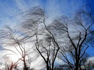 Очень сильный ветер ожидается 9 февраля в Челябинской области