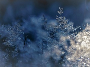 От 3 до 18 градусов мороза: сильный разброс ночных температур в Челябинской области