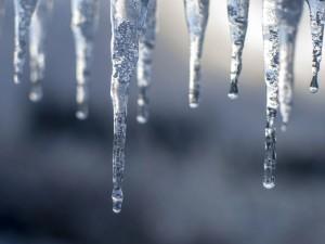 Потепление пришло в Челябинскую область