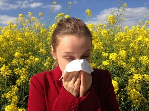 Перечислены весенние аллергены и меры защиты от них