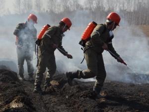 Крупный лесной пожар возник в Челябинской области