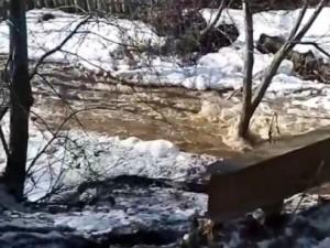 Труп выловили из реки в Златоусте
