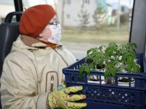 Садовые маршруты заработают с 1 мая в Челябинске