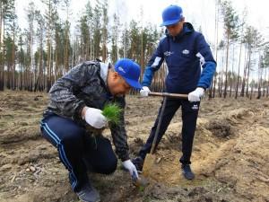 Акция «Сад памяти» проходит на Южном Урале