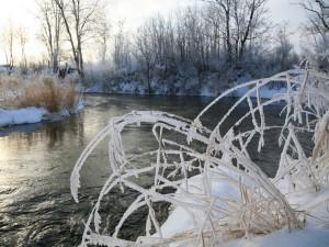 Заморозки до минус 8 градусов ожидаются в Челябинской области